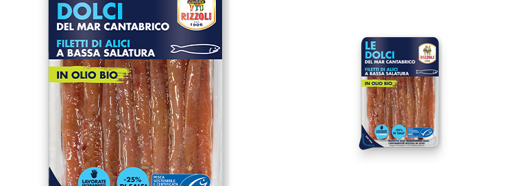 Cantabrian Sea anchovy fresh fillets